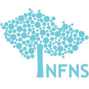 nfns-copy